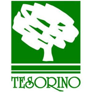 Azienda Agraria Villino e Tesorino di Neri Elena